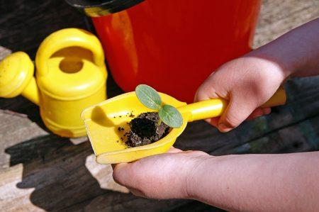 Child holding garden trowel