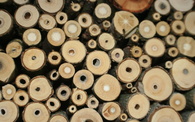 Tubes inside a bee hotel