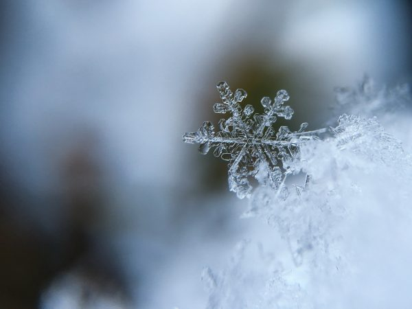 Snowflake resting on ice crystals
