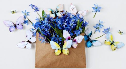 Kuma butterfly brooches and flowers