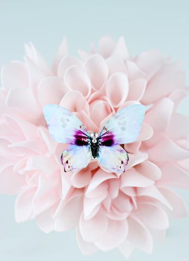 KUMA_butterfly brooch SeaShell showcase