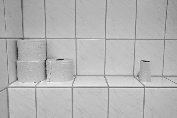 Toilet rolls on bathroom shelf