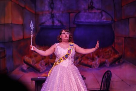 Cinderella the pantomime