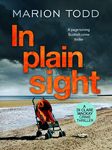 In Plain Sight by Marion Todd